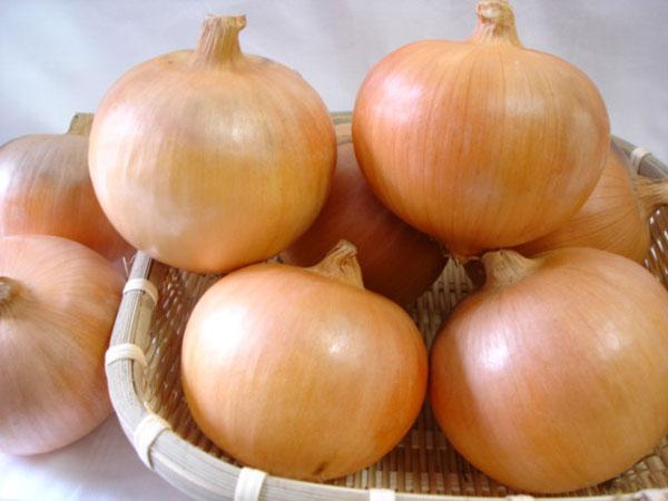 玉ねぎの栄養が体をめちゃめちゃ元気にする7つの理由☆