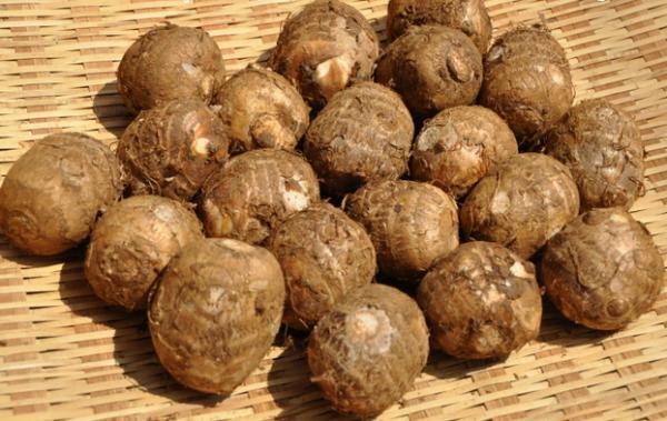 里芋の栄養で美肌を作る!簡単・美味しい7つのレシピ