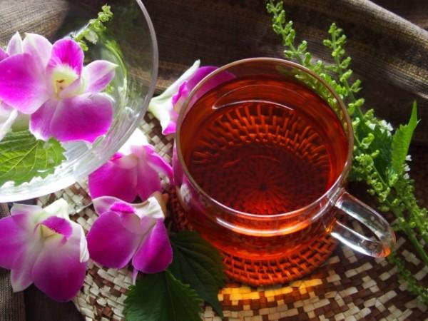 マテ茶の効能はダイエットに最適!その理由を徹底分析