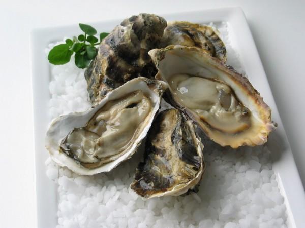牡蠣の栄養が男性にもたらす7つの嬉しい効果とは